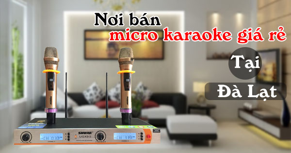 micro karaoke không dây giá rẻ tại Đà Lạt